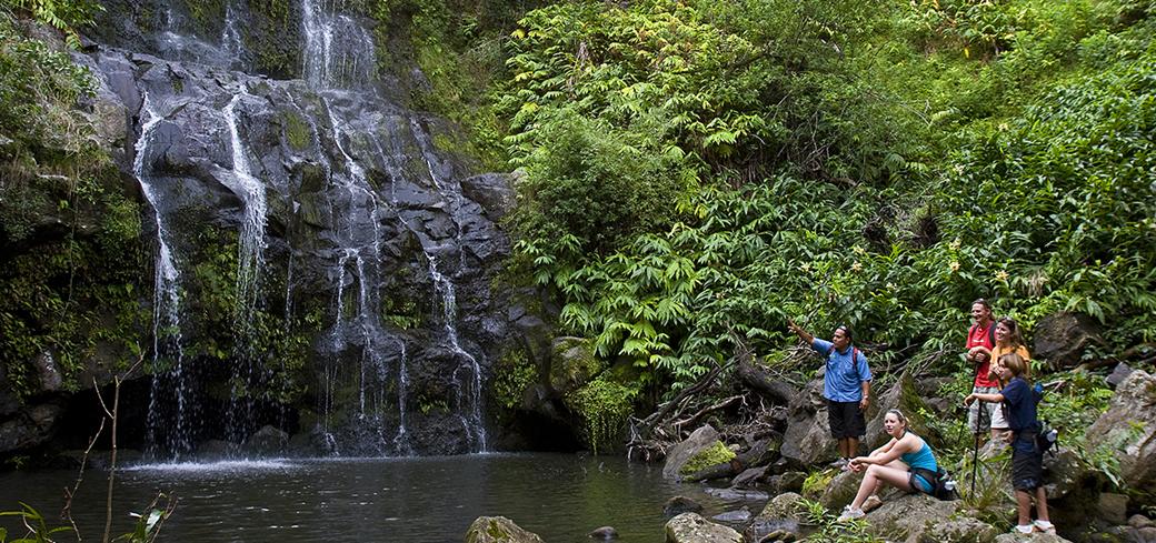 Product Kohala Waterfalls Adventure Tour